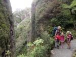 Windy Canyon