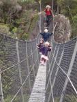 Cool wobbly bridge